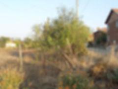 Land for Sale in Burgas Region