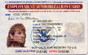 New Zealand Immigration Agent In Karachi