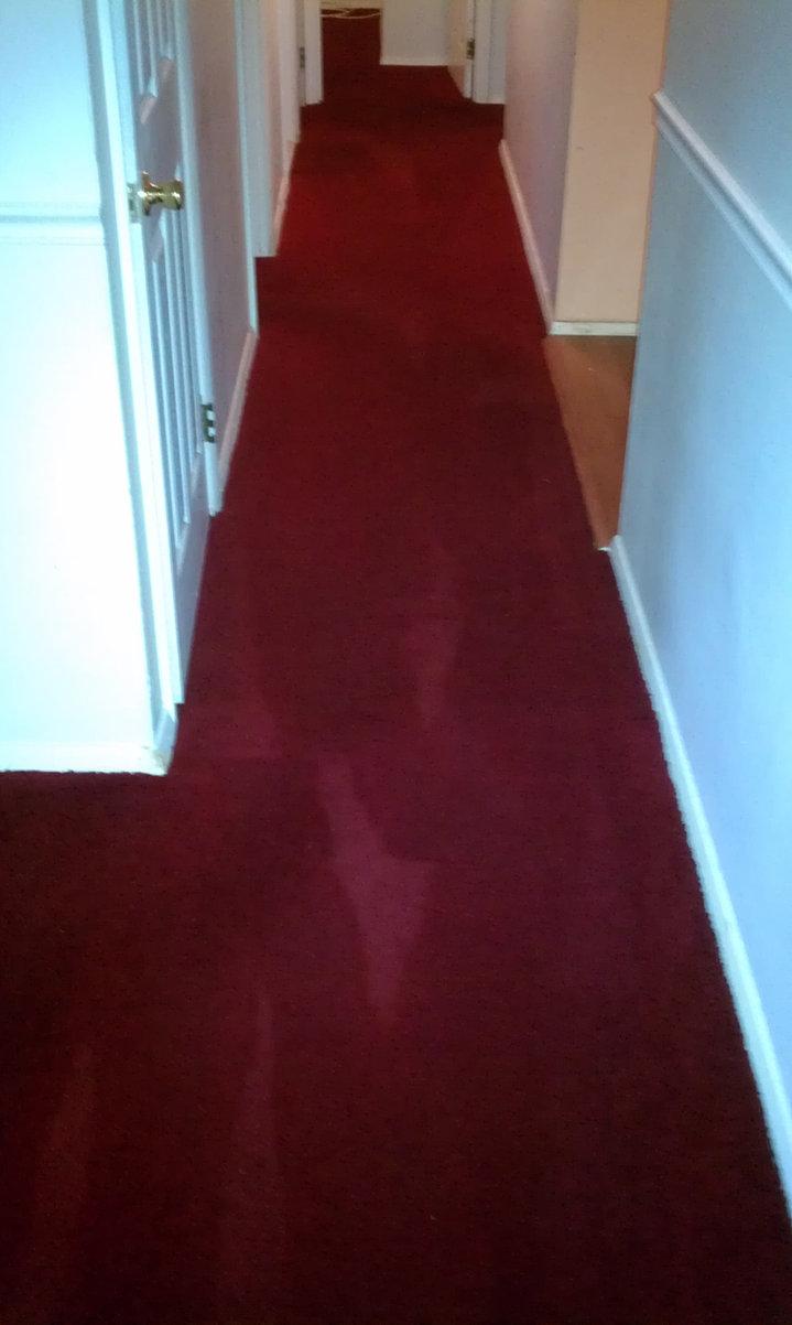 Dominion Carpet Cleaning | Waldorf Maryland Carpet ...