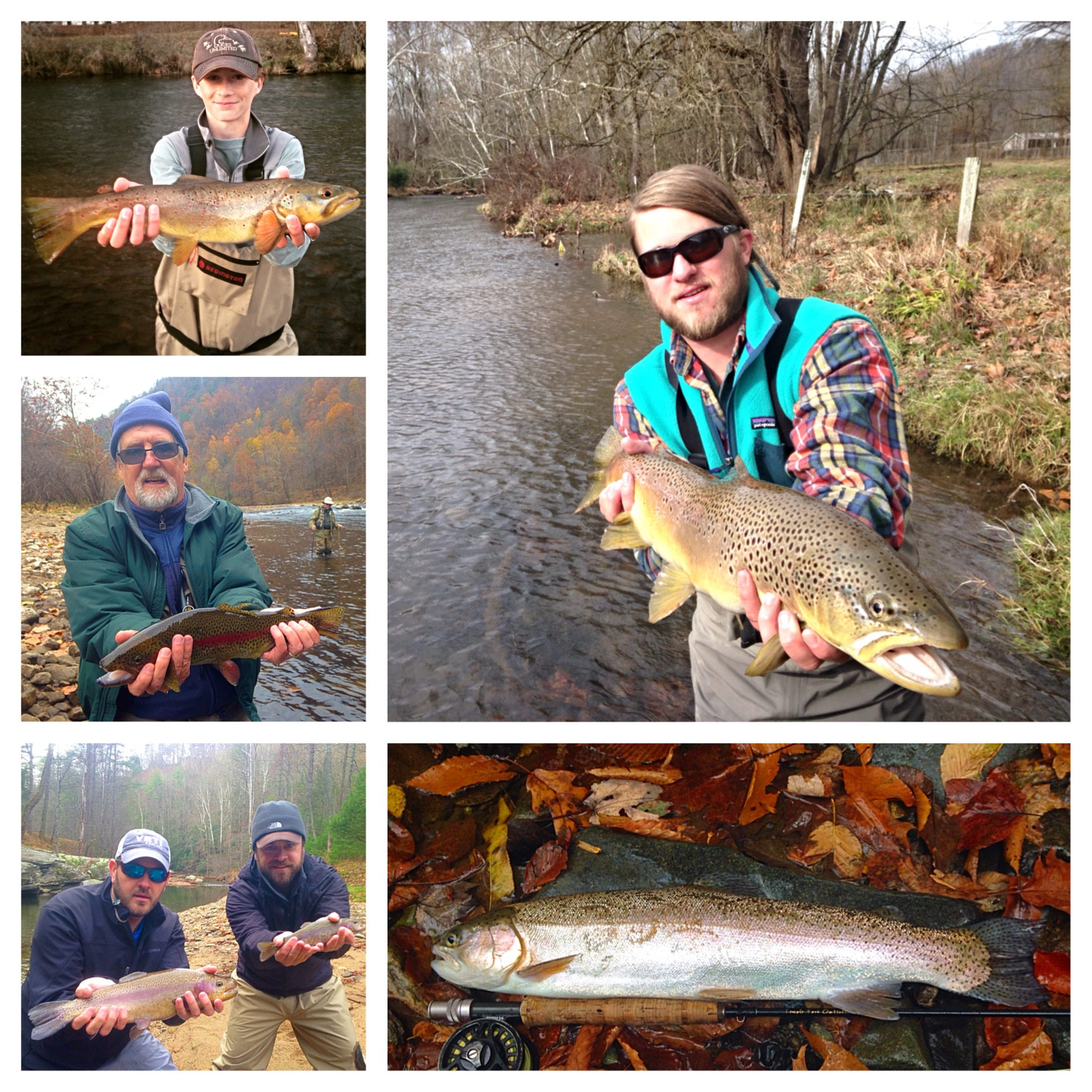 Boone fishing report 2 4 2015 due south outfitters fly for Fishing in boone nc
