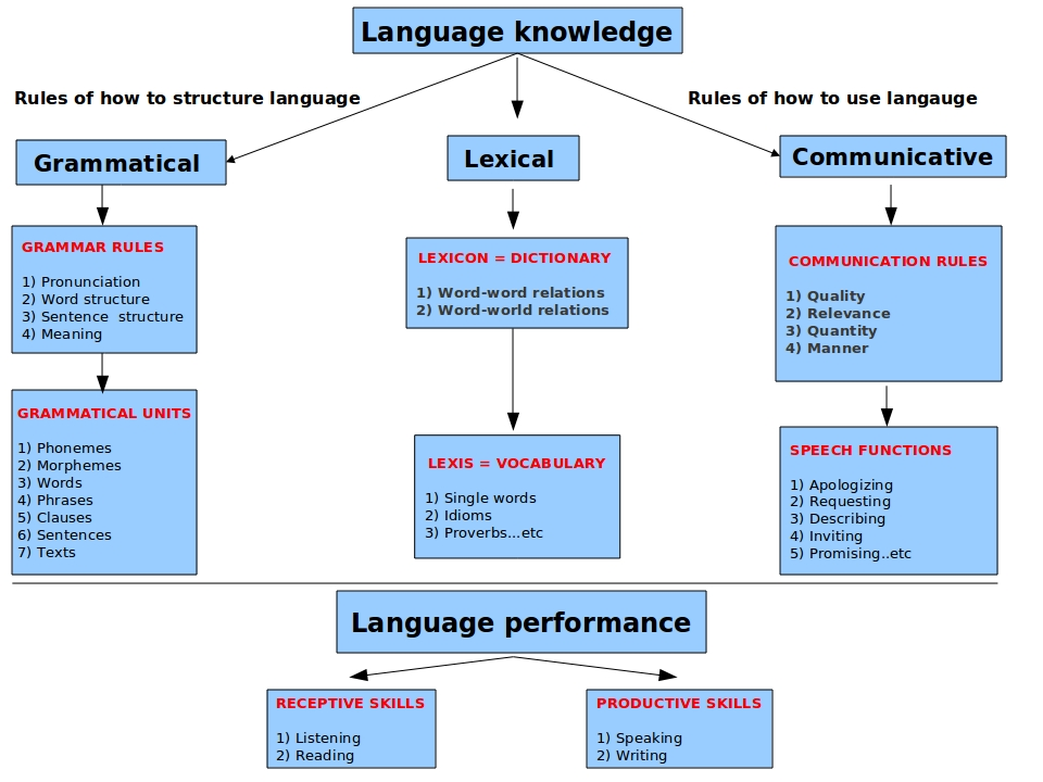 the role of age and cognitive specialization to learning a language A look at theories of language acquisition with criticisms of these theories his cognitive theory of language learning  slave to your role.