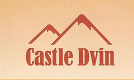 логотип Castle Dvin 2.jpg