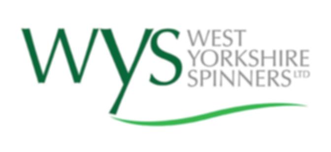wys_logo.png