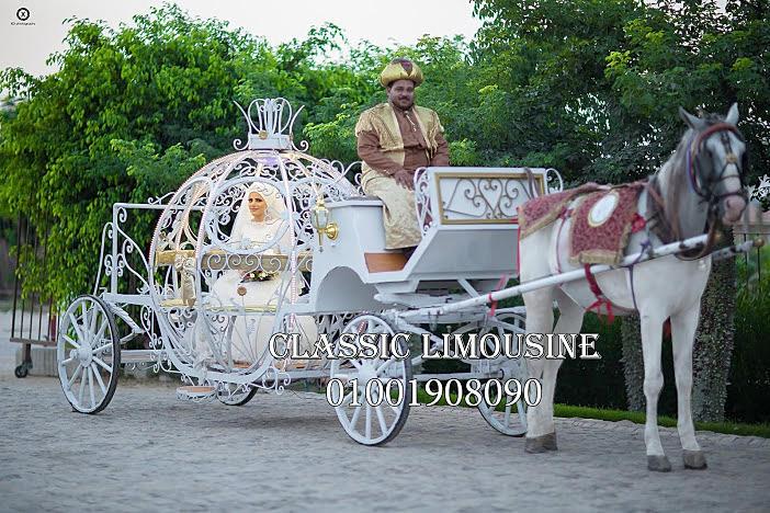 wedding cars in egypt