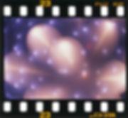 2001年 宍倉とおる写真展 /もうひとつの華-01