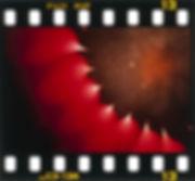 2001年 宍倉とおる写真展 /もうひとつの華-06
