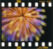 2001年 宍倉とおる写真展 /もうひとつの華-03