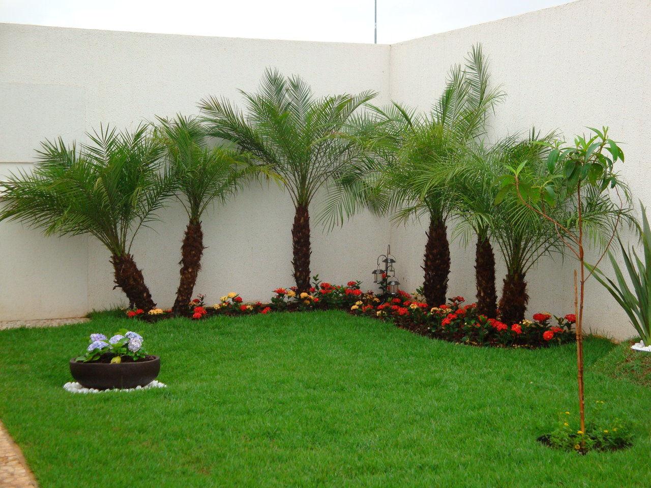 Plantas para jardins residenciais v rias for Casas e jardins simples