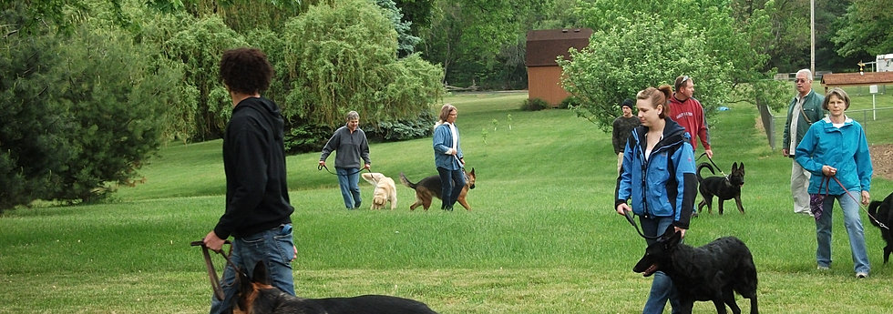 Dog Obedience Training Elkhart Indiana