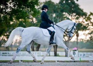 White Fences Loxahatchee Real Estate Homes for Sale Equestrian