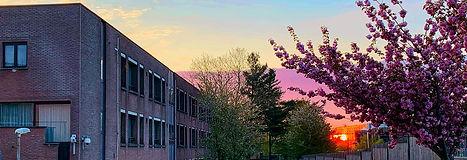 春黎明の校舎.jpg