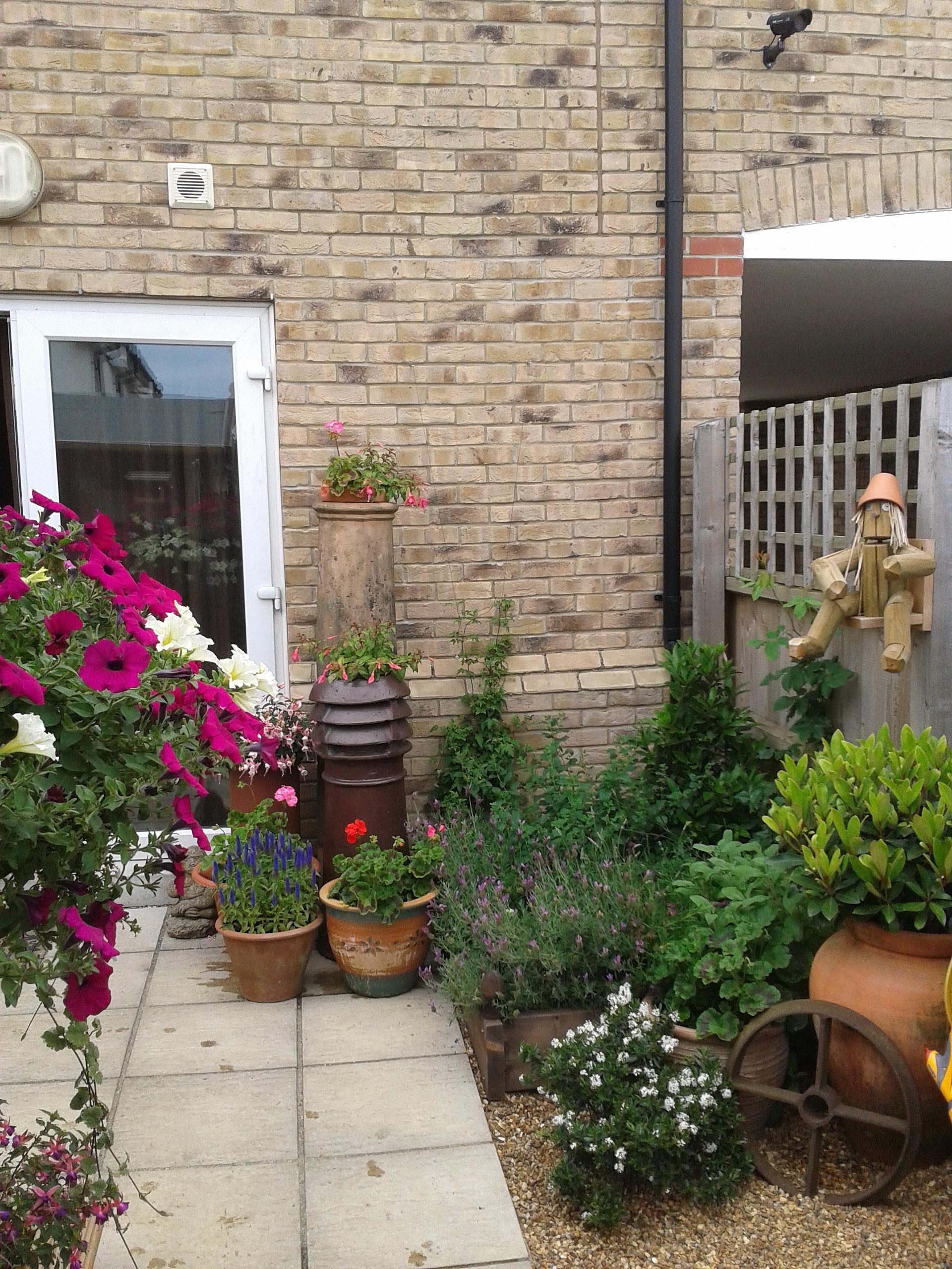 Courtyard garden for Zero maintenance garden