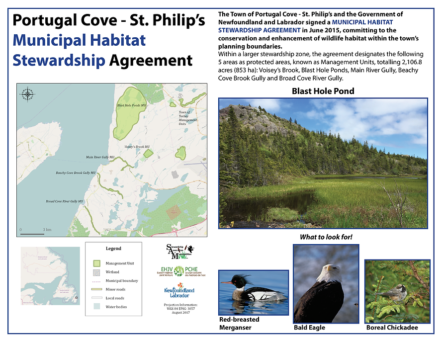 Stewardship Association Of Municipalities Portugal CoveSt Philips - Portugal cove nl map