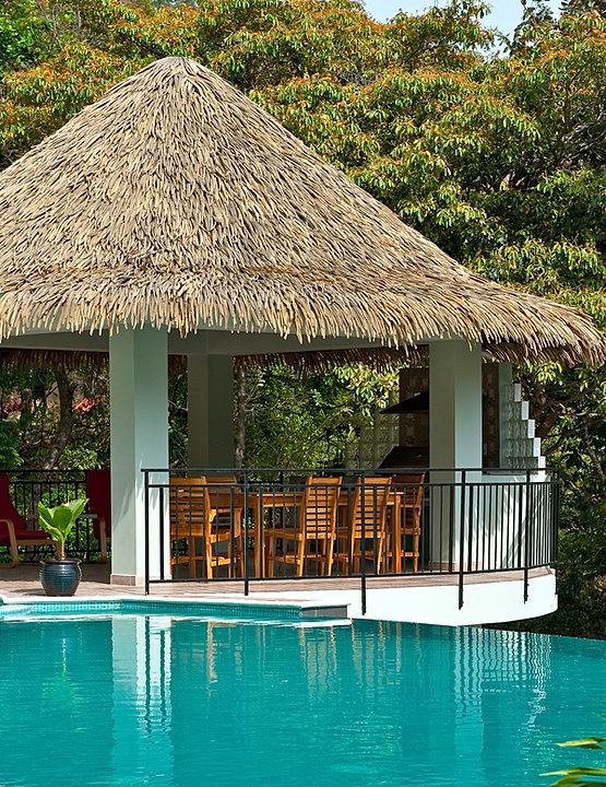 Backyard Tiki Hut Plans : The Professionals Landscape Design and Constructio  Tiki Huts