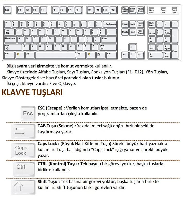 word teplates