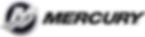 Mercury Mercruiser engine diagnostics