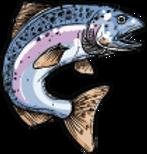 poisson gauche_2x.png