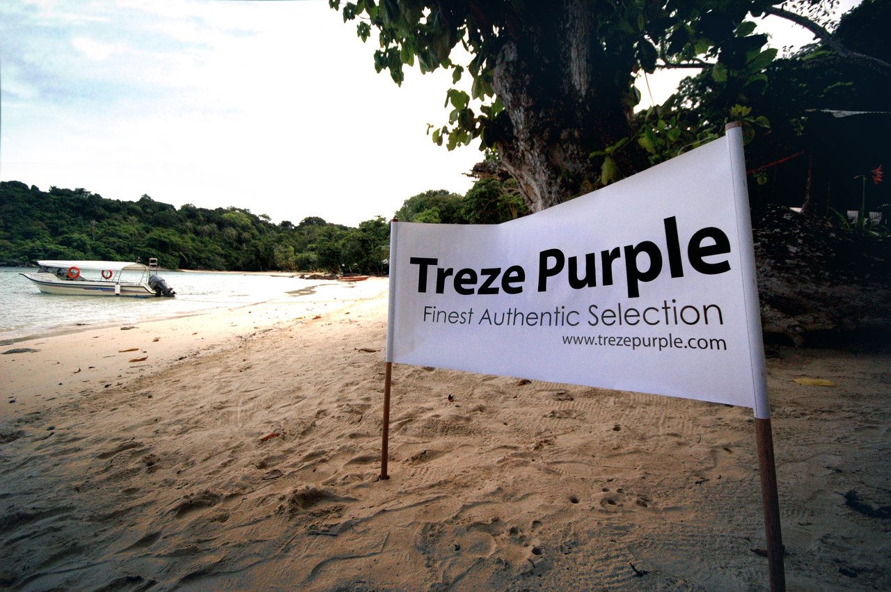 treze purple on the beach