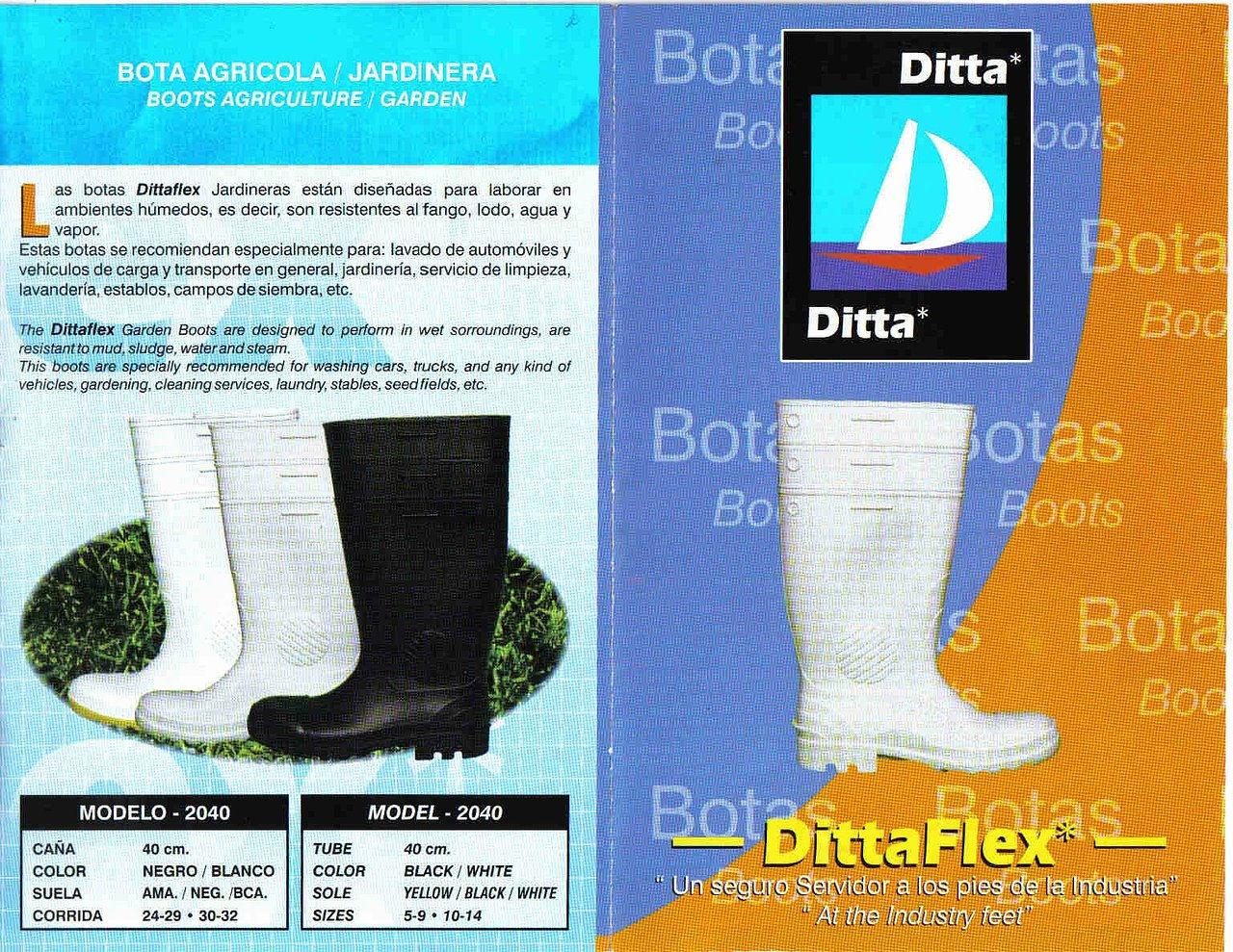 DITA2.JPG
