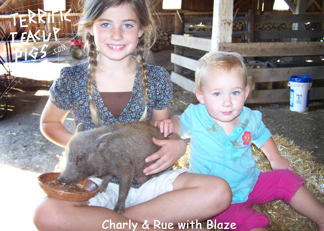 Charly and Rue with Blaze