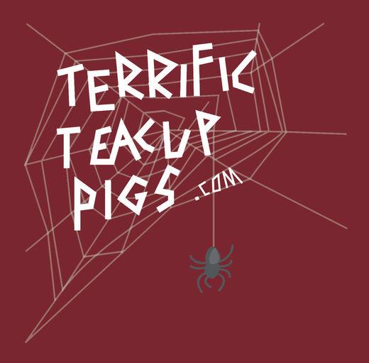 Terrific Teacup Pigs Logoo.jpg