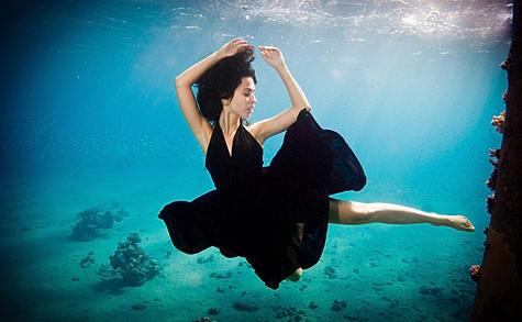 Увлекательное дайвинг-сафари плюс семинар по мастерству подводной съемки