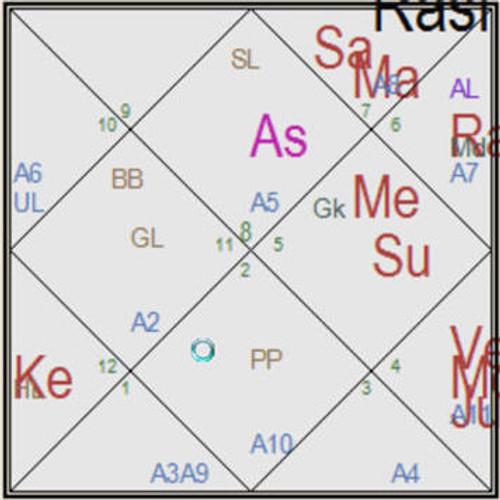 Vedic Natal Chart Report