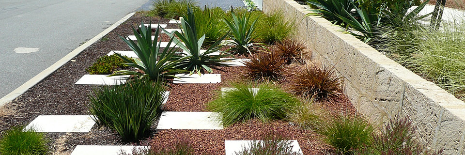 Water efficient plantscapes faq for Garden landscaping perth