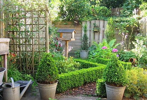 De groene hof tuinontwerpen beplantingsadvies - Kleine stadstuin ...