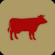bovinos botão.png