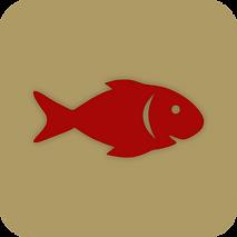 peixe botão.png