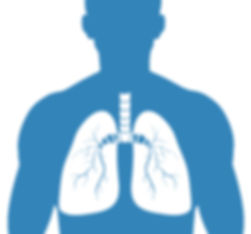 Lung Silhouette.jpg