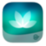 HealtheLife Icon.png