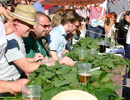 world famous nettle eating event