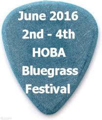 June festival pick.jpg