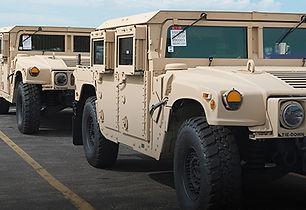 HumV.jpg