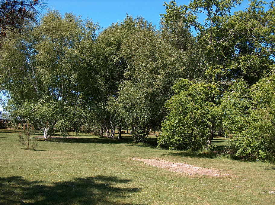 Aire De Camping Car Lac D Hourtin