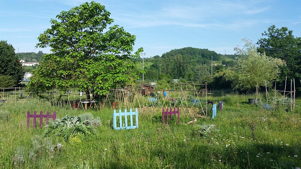 Blog for Boulevard du jardin botanique 20 22