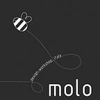 MOLO_DW_logo.png