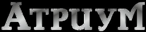 Логотип-01.png