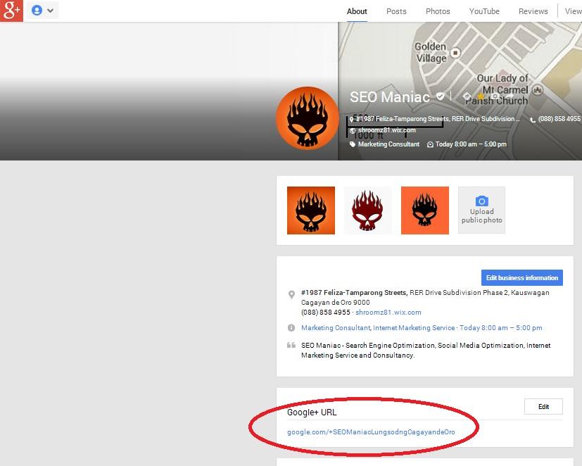 Google+ SEO Maniac Page