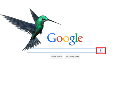 SEO Philippines On Google Hummingbird Update