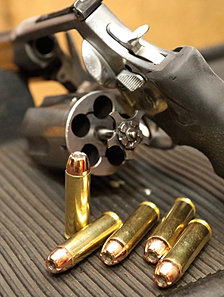Smith and Wesson 686 .357 Magnum