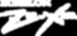 ZX-Dynamic.png