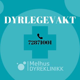 DYRLEGEVAKT.png