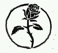 blk rose graphic
