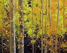 Fall Aspen; Santa Fe