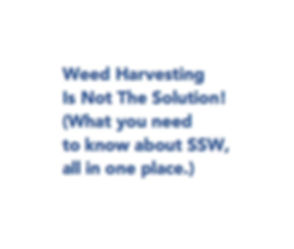 SSWWH_edited.jpg