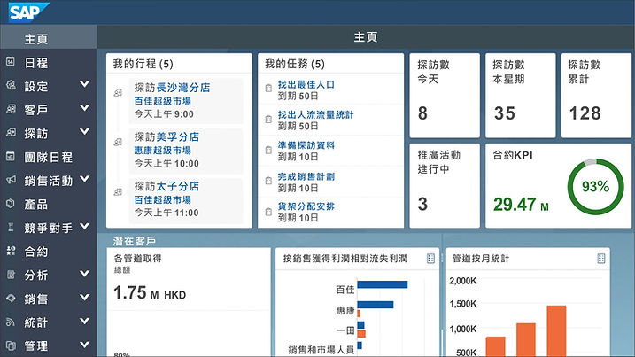 SAP screen.jpg