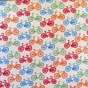 Bicicleta 001